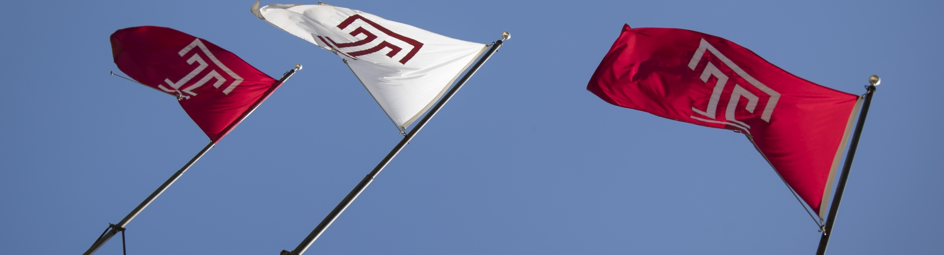 Picture of Temple flags waving in the wind