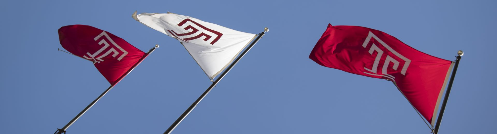 Temple University flags wet against the sky and blowing in the wind