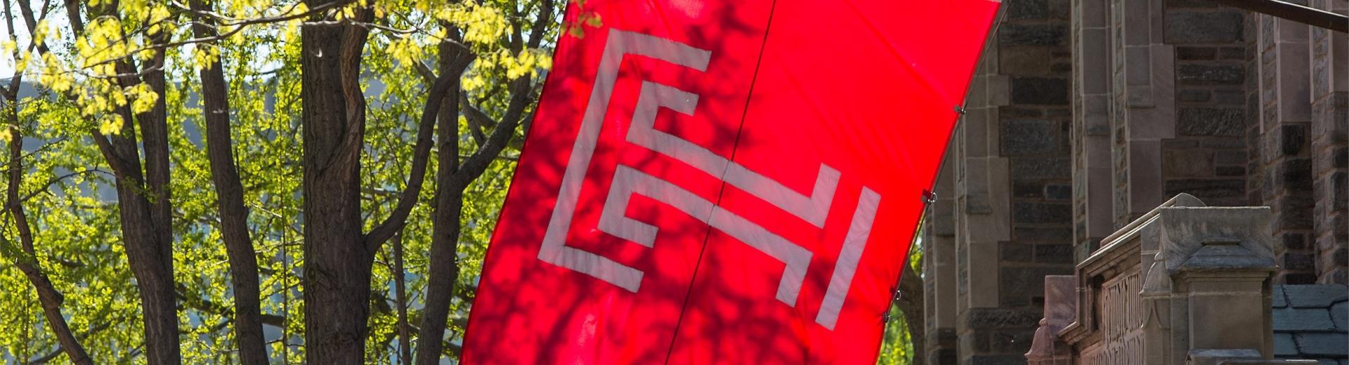 Temple University Flag